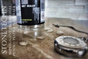 Natural stone sealer.STONETECHN